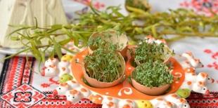 Как быстро вырастить зелень для оригинального декорирования пасхального стола