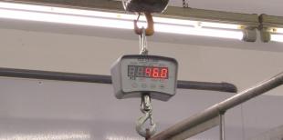 Подвесные крановые весы: общие сведения