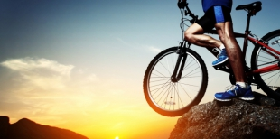 Особенности страхования спортсменов