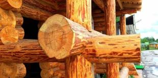 Область применения древесины сибирской лиственницы