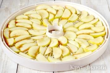 Как в домашних условиях сделать сушку из яблок в домашних условиях