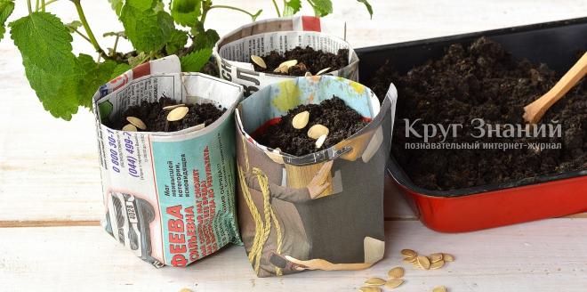 Как изготовить одноразовые горшочки для выращивания рассады из подручных материалов