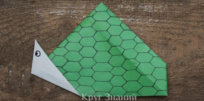 Как сделать черепаху из бумаги