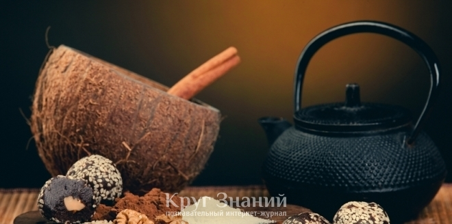 Скорлупа от кокоса поделки